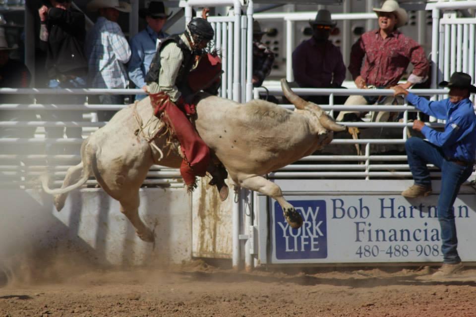 rodeo_america