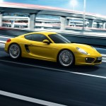 Porsche Cayman 981 Launch